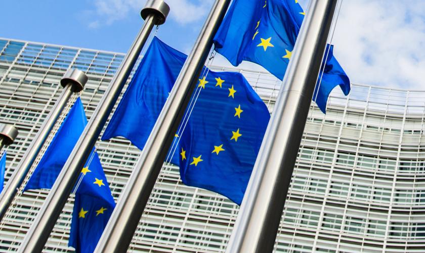 Таможенные лимиты по ввозу в ЕС